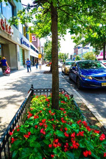 Tree Pit Flowers_Steinway.vdp.125